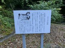 Hatsukasan02.jpg