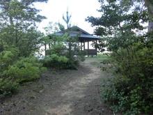 Hatsukasan11.jpg