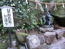Kumanonachi_taisya021.jpg