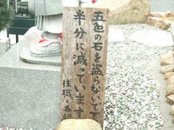 100424_04.jpg