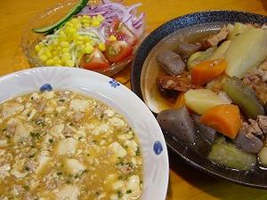 麻婆豆腐・残り物煮物・サラダ