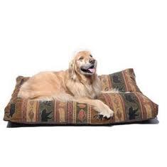 dog_rest.jpg