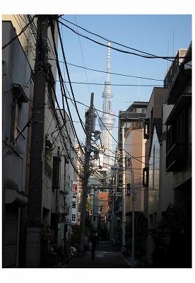 2011-11-104.jpg