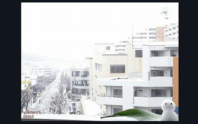 2012-02-291.jpg