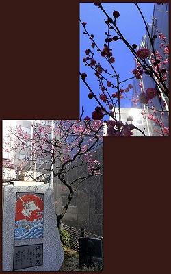 2012-03-12.jpg