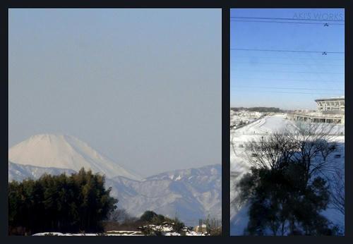 2013-02-031.jpg