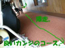 DSCN2400.JPG