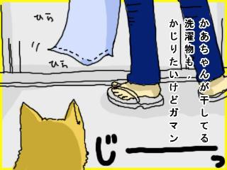 f97b5187.jpeg