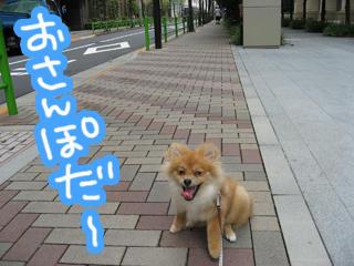 IMG_0027.jpg