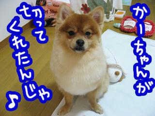 IMG_00080.jpg