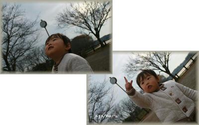 IMG_2291-1.jpg
