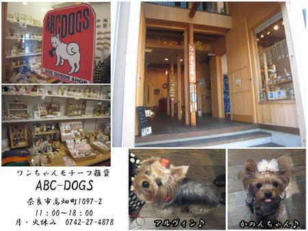 111027ABC-DOGS.jpg