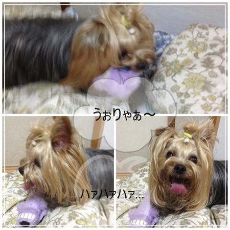 naramachi.4.jpg
