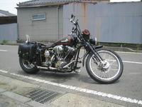IMG_68070001.jpg