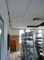 1階の天井。