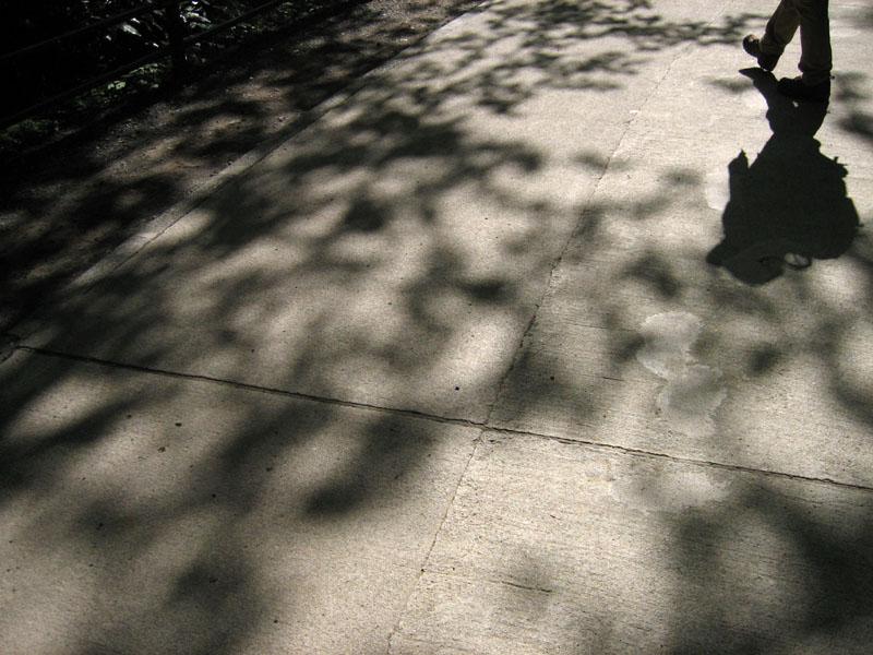 blog20120512takao_IMG_1723_mini800px.jpg