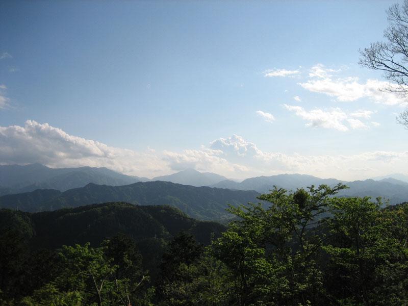 blog20120512takao_IMG_1926_mini800px.jpg