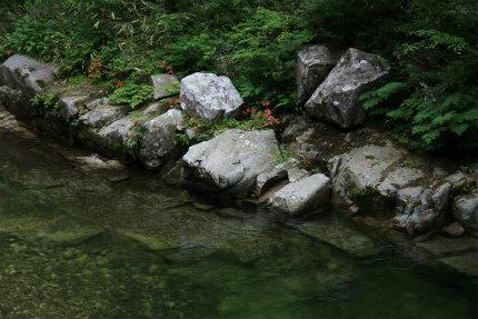 20120615_4.jpg