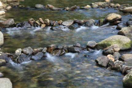 20120629_1.jpg