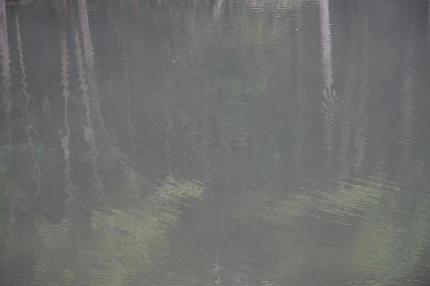 20100818_4.jpg