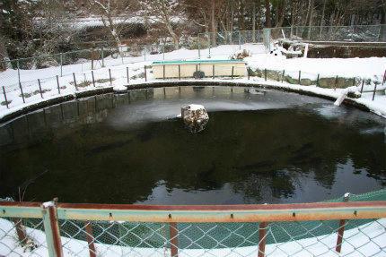 20110120_1.jpg