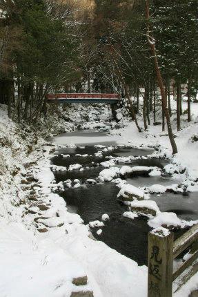 20110131_2.jpg