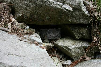20110330_2.jpg