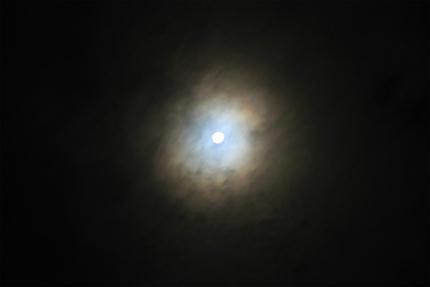 20110912_1.jpg