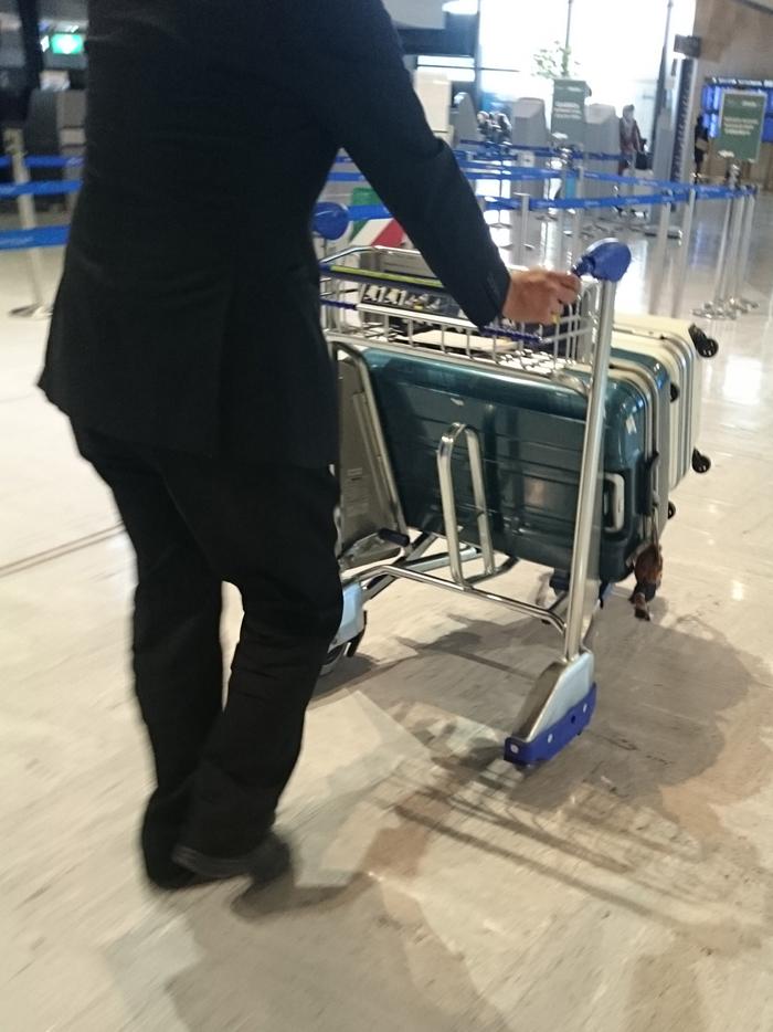 3892c6c082 AMEXさんは旅行に関してほんとサービスが充実していてスーツケースの無料宅配はとても有り難いし海外旅行保険はカードに家族分まるっと付帯されていたりする。