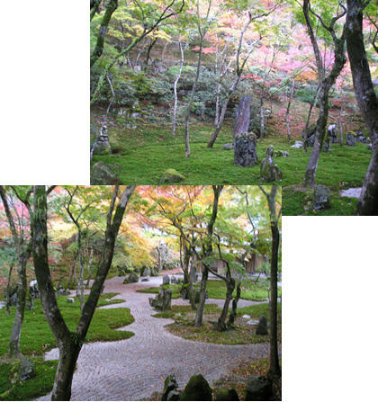 紅葉の光明禅寺
