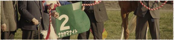 競馬場めぐりJRA東京競馬場編イメージ
