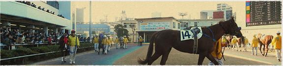 競馬場めぐり川崎競馬場編イメージ