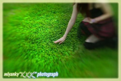 2010101729.jpg