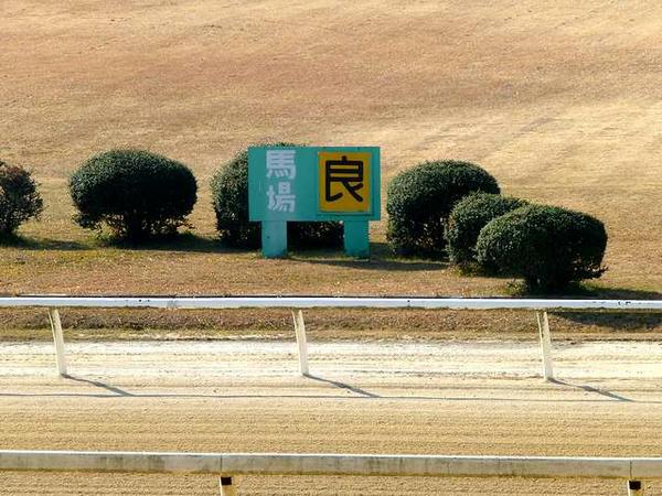 馬場状態の看板
