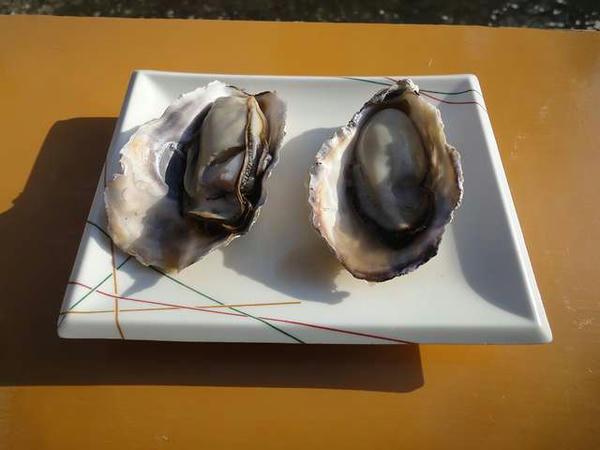 焼き牡蠣(1個200円)