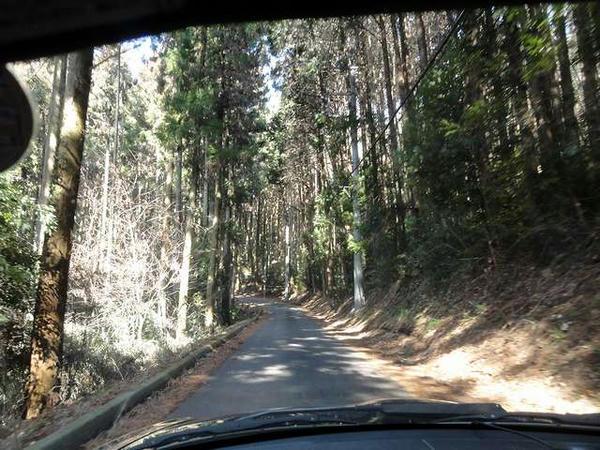 羽黒山神社へと続く道路