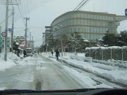 雪の福島競馬場