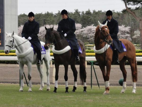 新潟競馬場の誘導馬(中央がスーパージーン号)