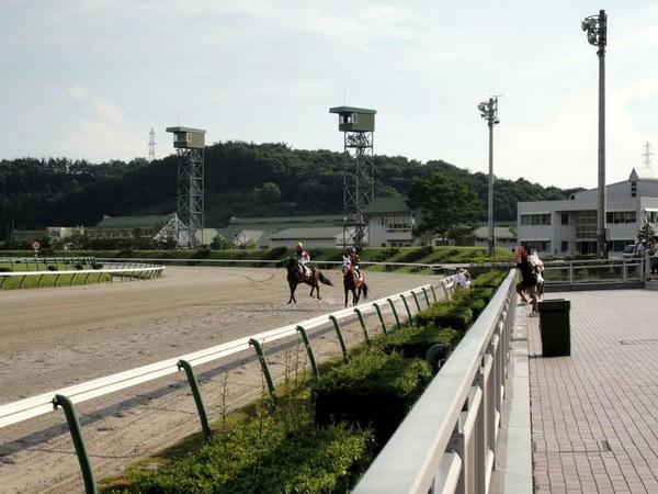 入場する競走馬