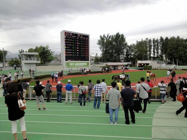 札幌競馬場のパドック