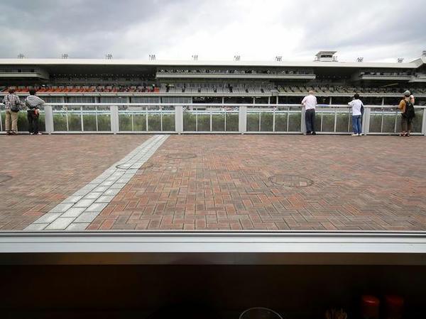 馬場側の席からの眺め