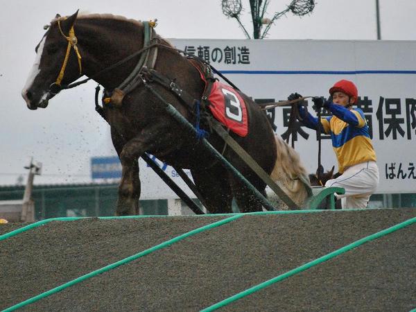 勝負所の第2障害を越えるばん馬