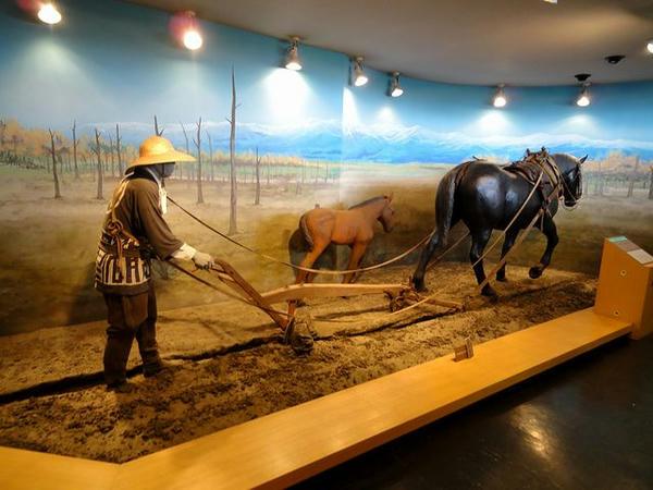 馬の資料館展示物(3)