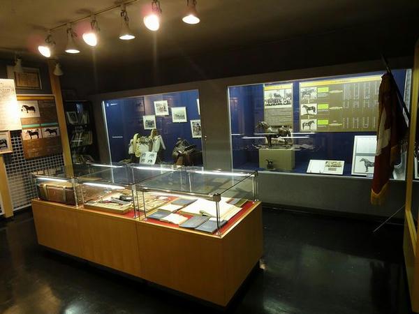 馬の資料館展示物(4)