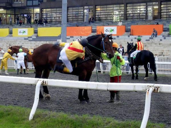 大河原ジョッキーが競走馬に跨るところ(1)