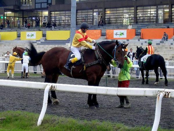 大河原ジョッキーが競走馬に跨るところ(4)