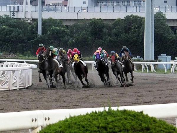 4角を回る競走馬