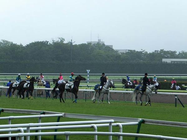 雨の本馬場入場