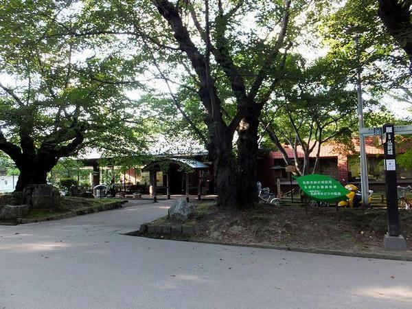 緑の相談所