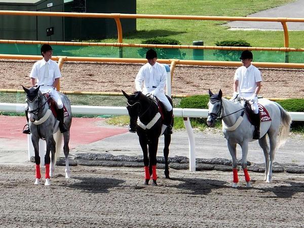 1Rの誘導馬
